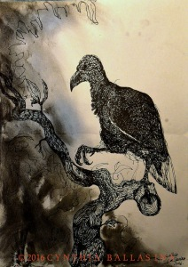 Vulture on a Branch (2016) pen & charcoal